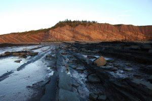Surveying the Joggins Fossil Cliffs