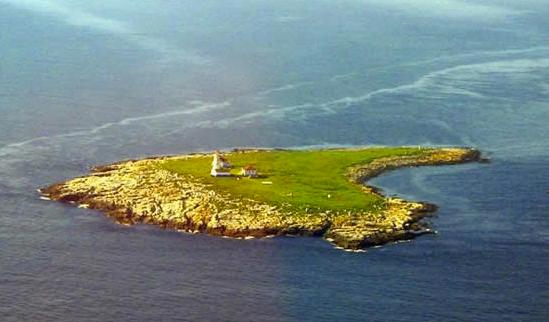 machias seal island